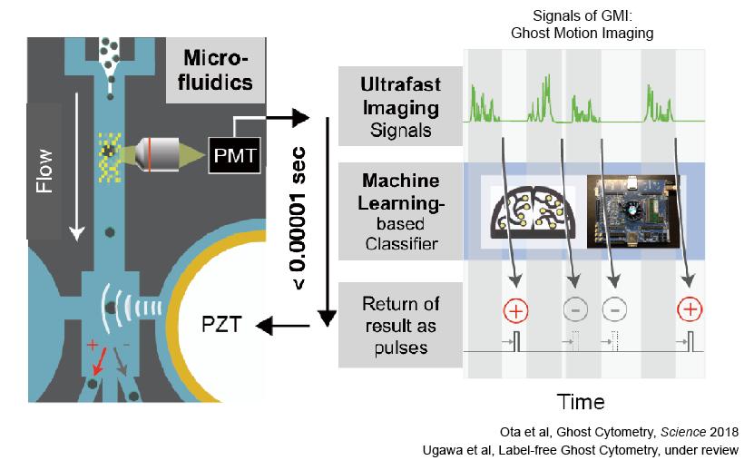 図表3 世界初AI駆動型の高速細胞形態情報判別ソーター