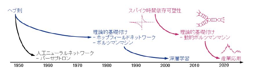 図表1 スパイク時間依存可塑性に理論的基礎付けを与える動的ボルツマンマシン(大塚誠氏との共同研究)