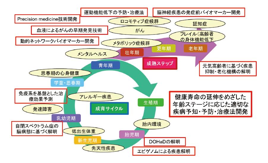 図表2 ライフコース・アプローチと関連科学技術